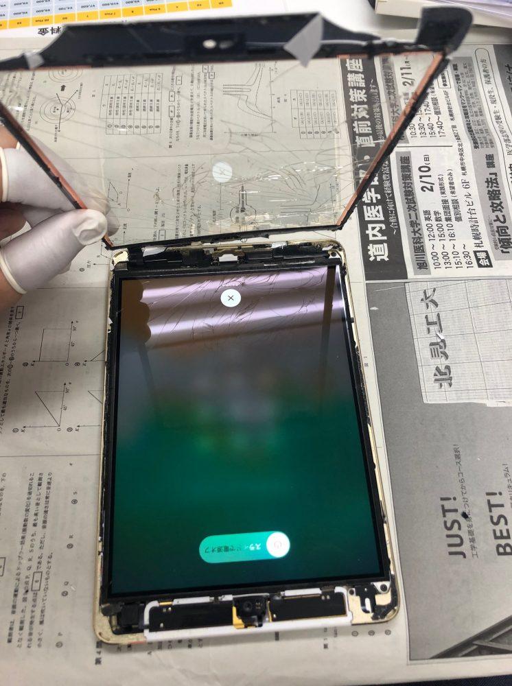 iPad 液晶